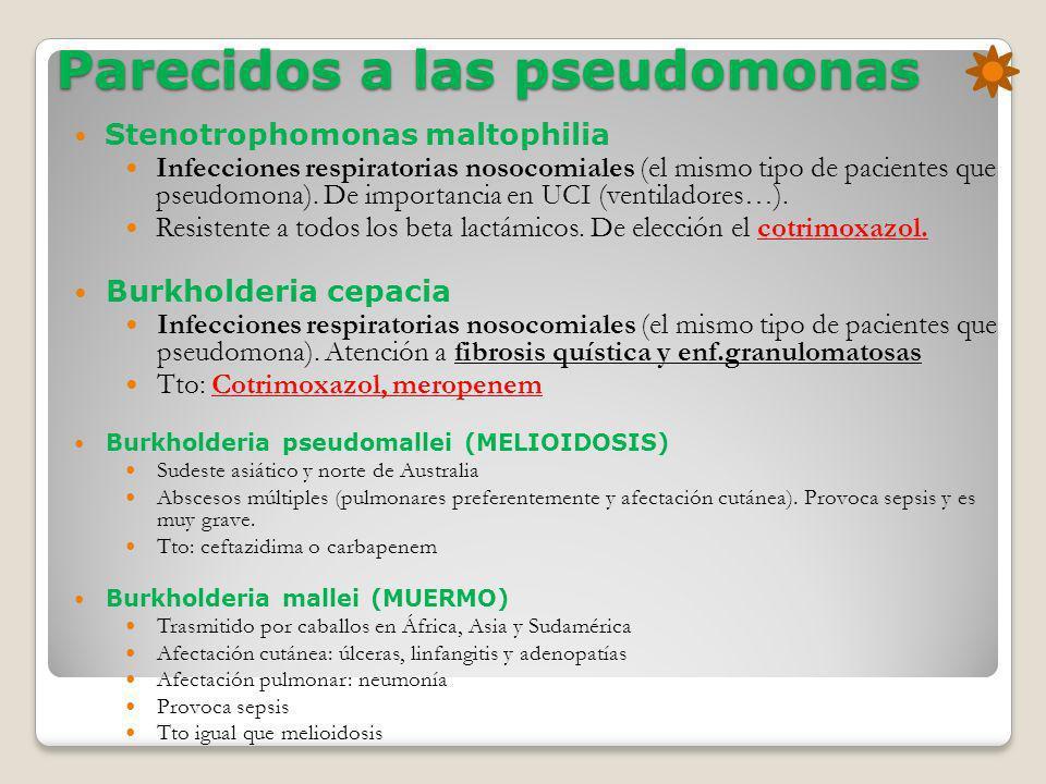 Parecidos a las pseudomonas