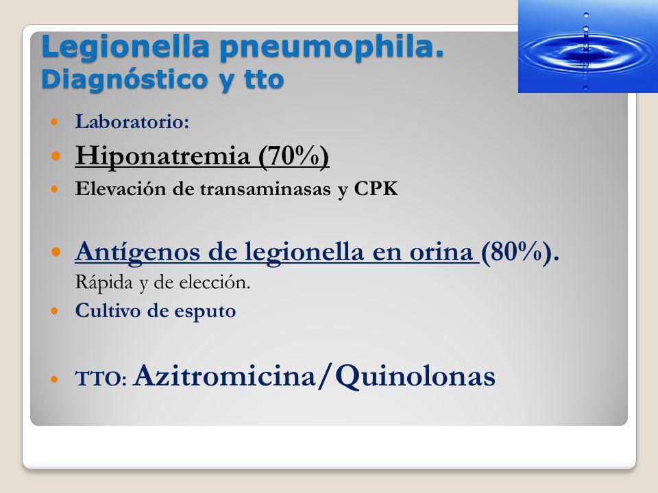 Legionella pneumophila. Diagnóstico y tto