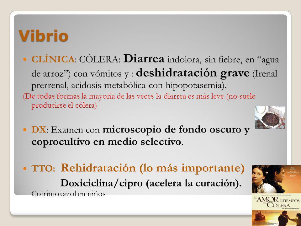 Vibrio Doxiciclina/cipro (acelera la curación). Cotrimoxazol en niños