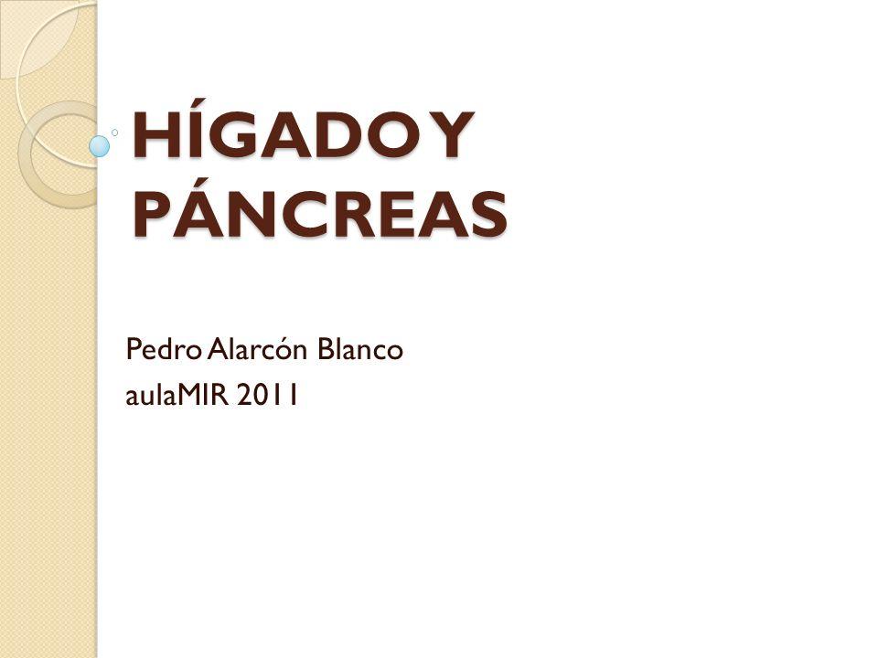 Pedro Alarcón Blanco aulaMIR 2011