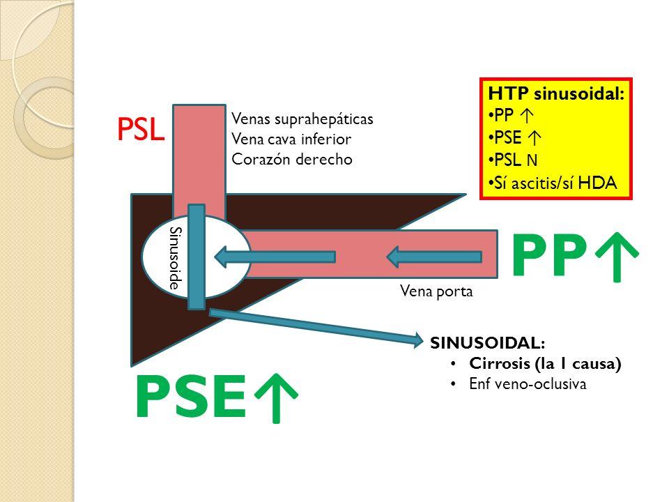 PP↑ PSE↑ PSL HTP sinusoidal: PP ↑ PSE ↑ PSL N Sí ascitis/sí HDA