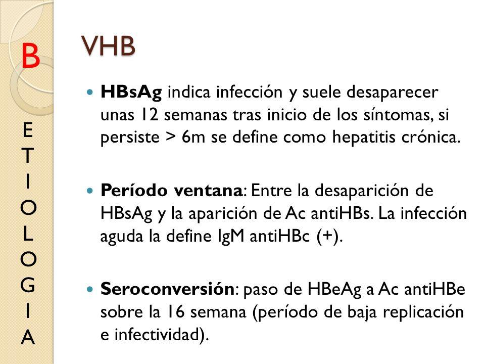 VHB B. HBsAg indica infección y suele desaparecer unas 12 semanas tras inicio de los síntomas, si persiste > 6m se define como hepatitis crónica.