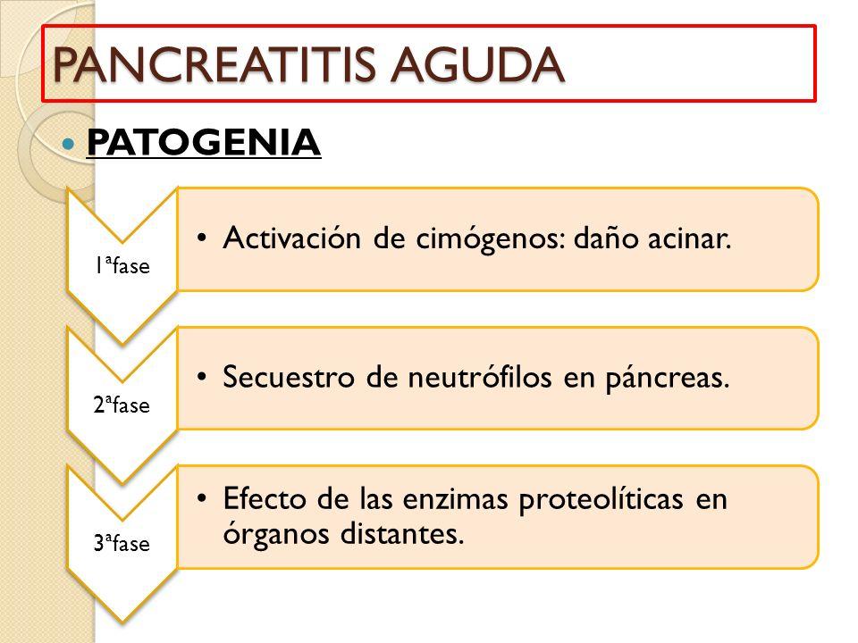 PANCREATITIS AGUDA PATOGENIA Activación de cimógenos: daño acinar.