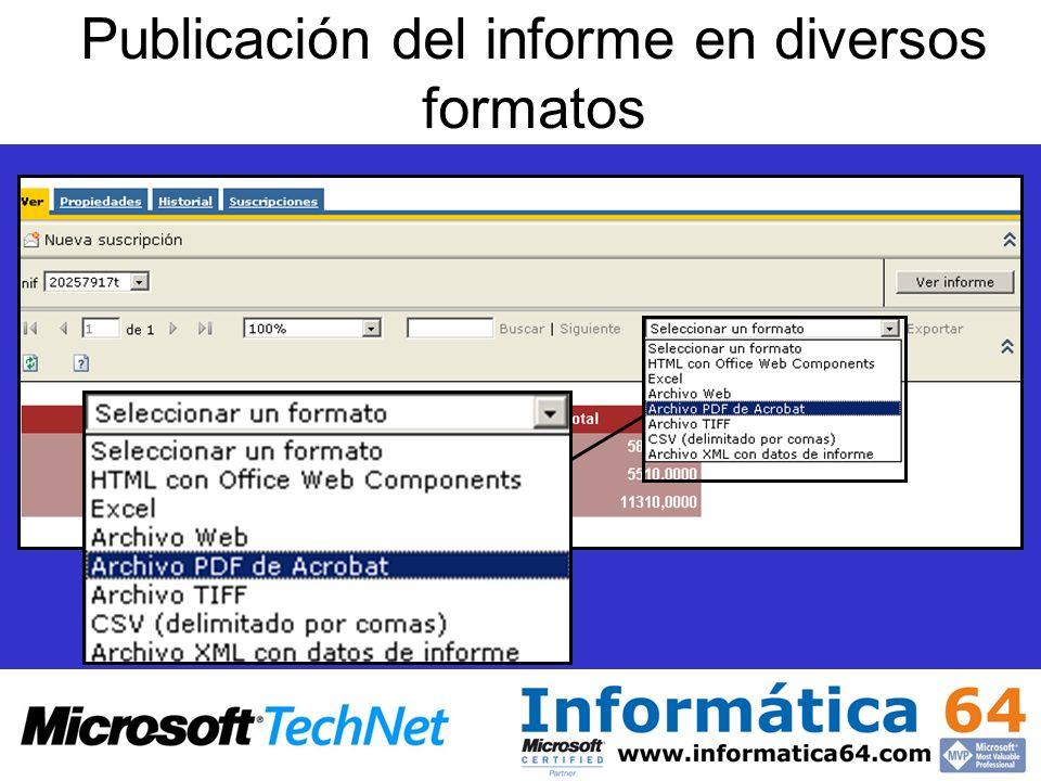 Publicación del informe en diversos formatos