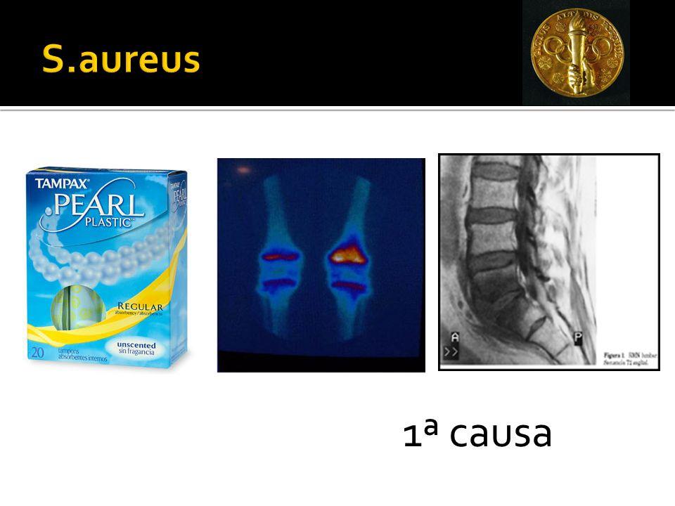 S.aureus 1ª causa