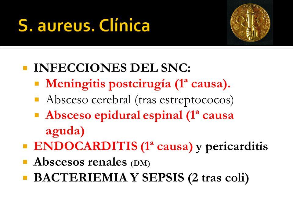 S. aureus. Clínica INFECCIONES DEL SNC: