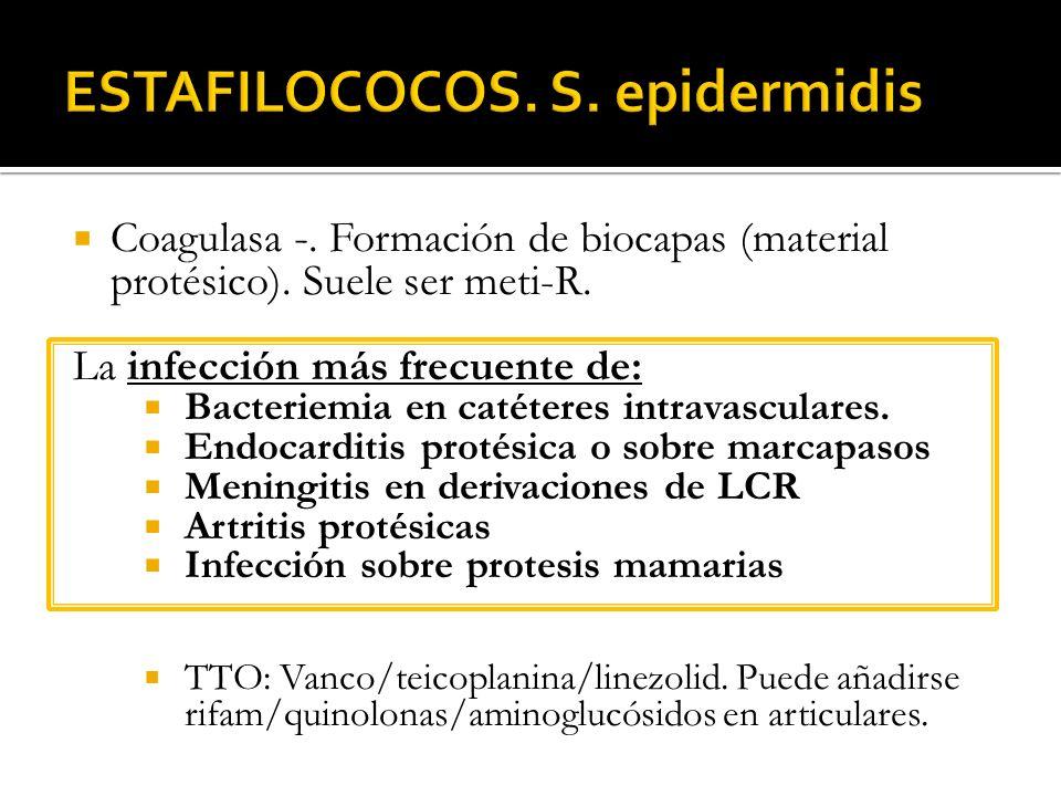 ESTAFILOCOCOS. S. epidermidis