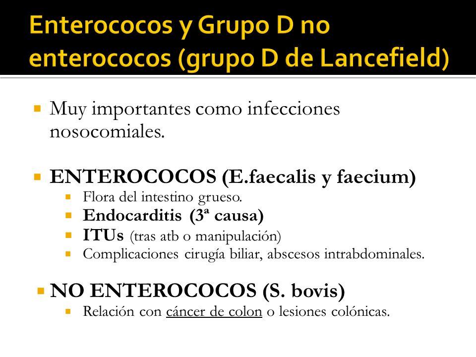 Enterococos y Grupo D no enterococos (grupo D de Lancefield)