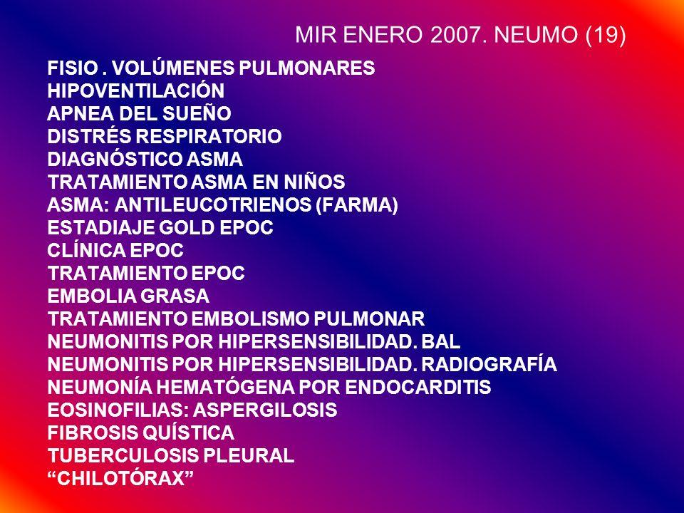 MIR ENERO 2007. NEUMO (19) FISIO . VOLÚMENES PULMONARES