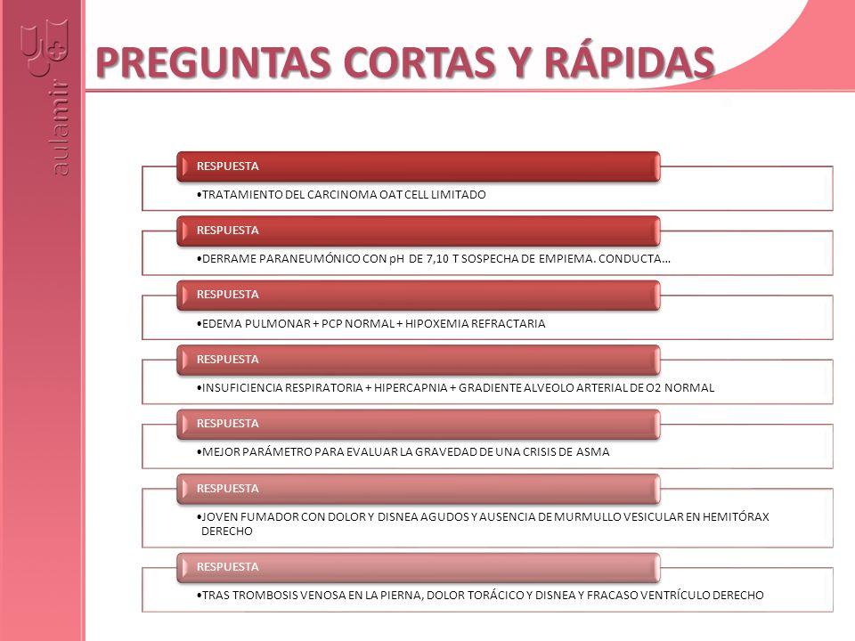 PREGUNTAS CORTAS Y RÁPIDAS
