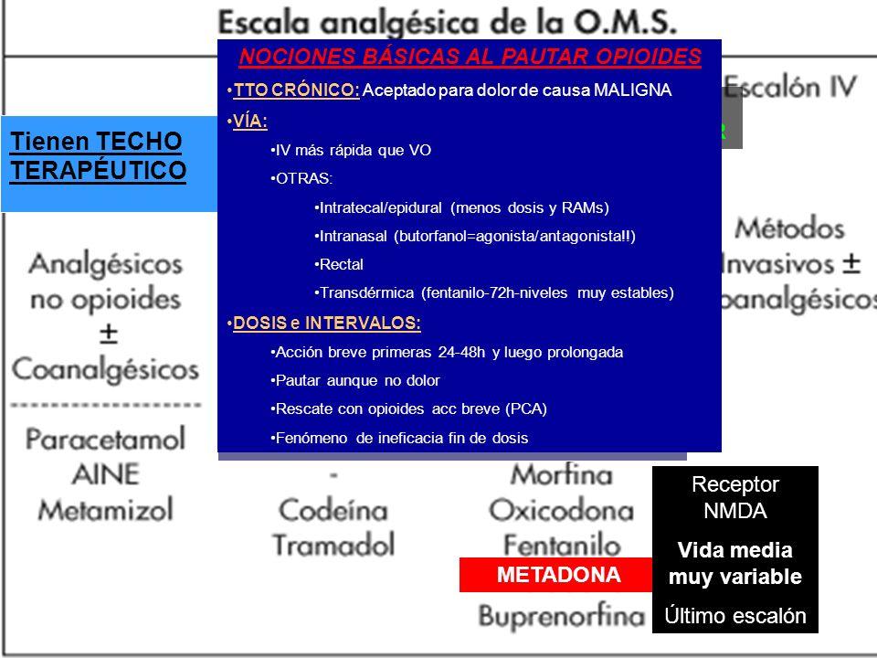 NALOXONA Tienen TECHO TERAPÉUTICO NOCIONES BÁSICAS AL PAUTAR OPIOIDES