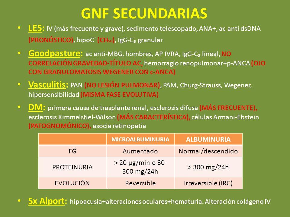 GNF SECUNDARIAS LES: IV (más frecuente y grave), sedimento telescopado, ANA+, ac anti dsDNA (PRONÓSTICO), hipoC´ (CH50), IgG-C₃ granular.