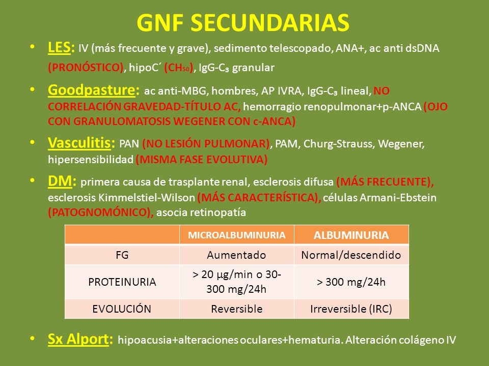 GNF SECUNDARIASLES: IV (más frecuente y grave), sedimento telescopado, ANA+, ac anti dsDNA (PRONÓSTICO), hipoC´ (CH50), IgG-C₃ granular.