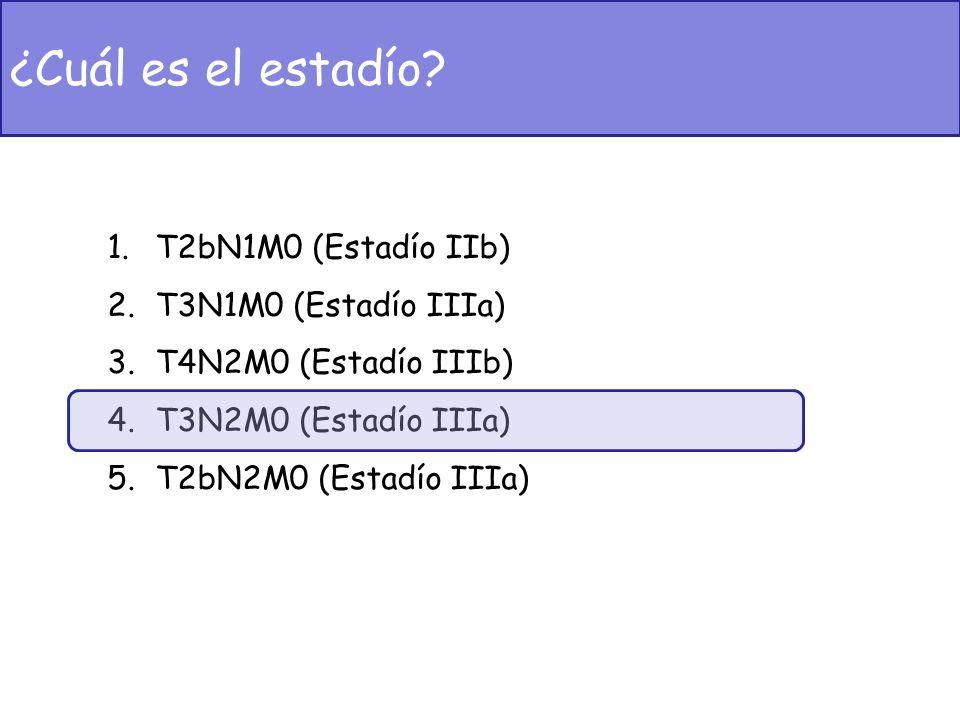 ¿Cuál es el estadío T2bN1M0 (Estadío IIb) T3N1M0 (Estadío IIIa)