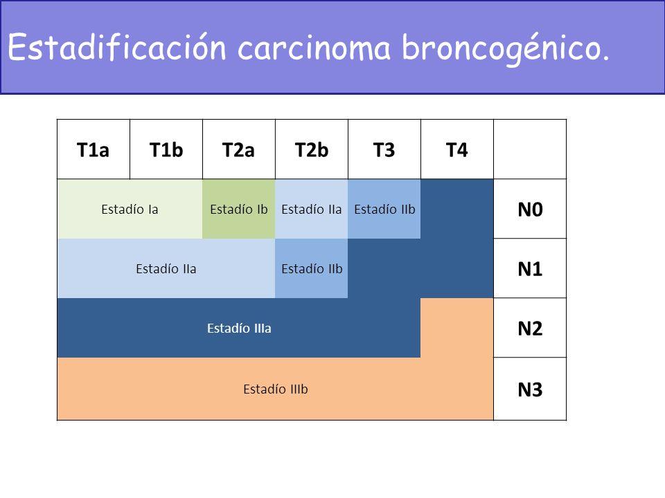 Estadificación carcinoma broncogénico.
