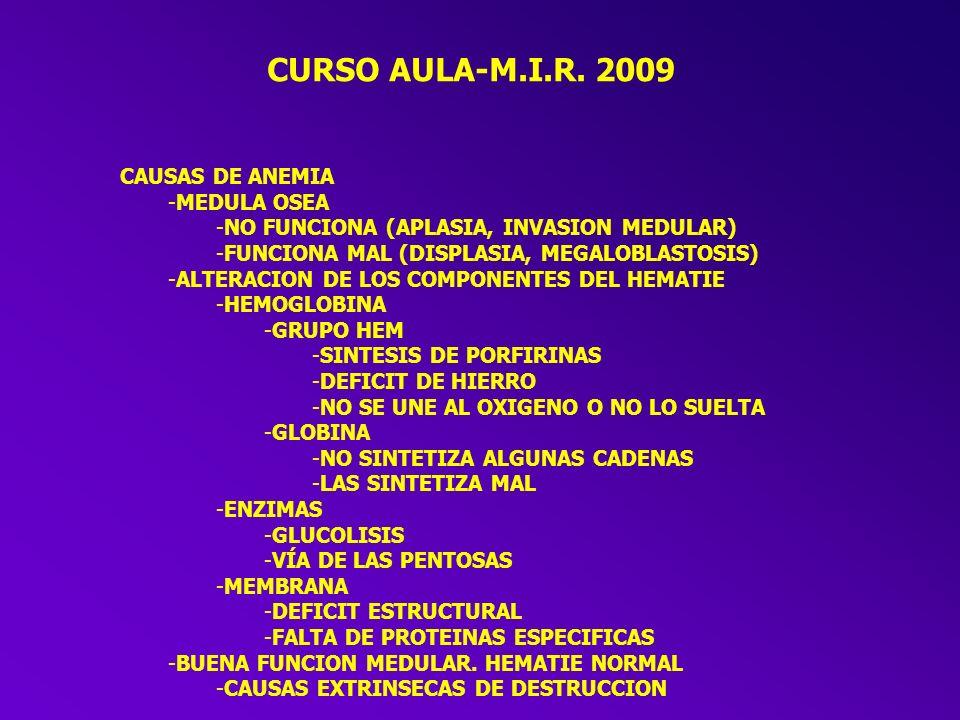 CURSO AULA-M.I.R. 2009 CAUSAS DE ANEMIA MEDULA OSEA