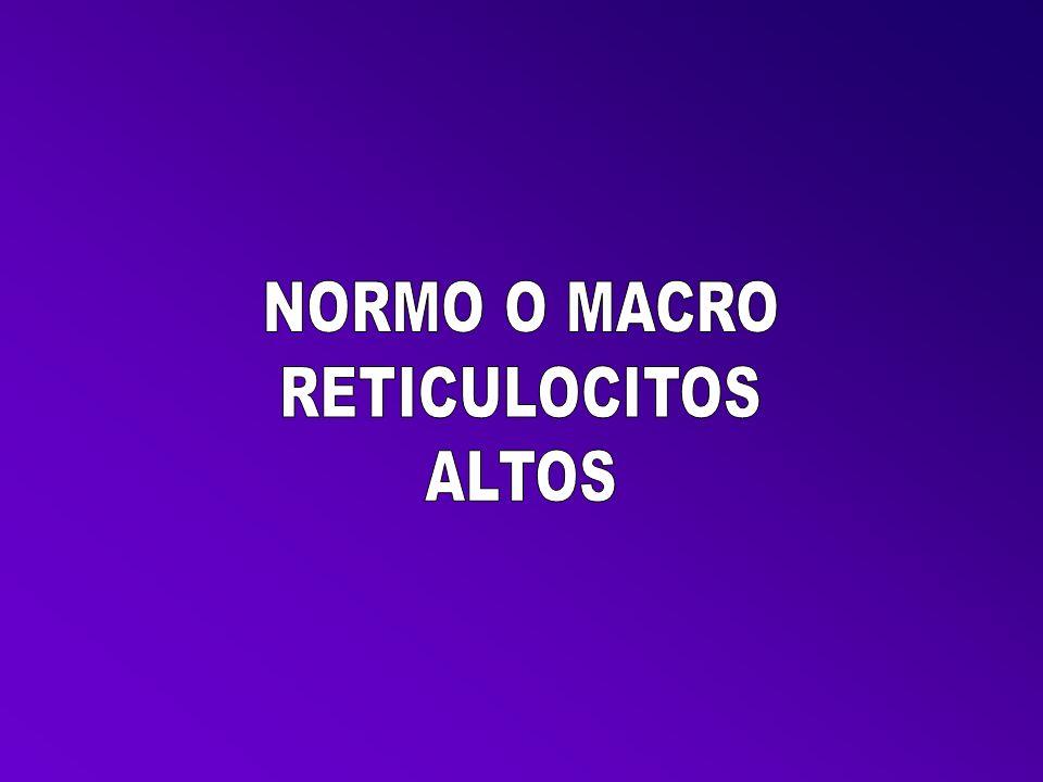 NORMO O MACRO RETICULOCITOS ALTOS
