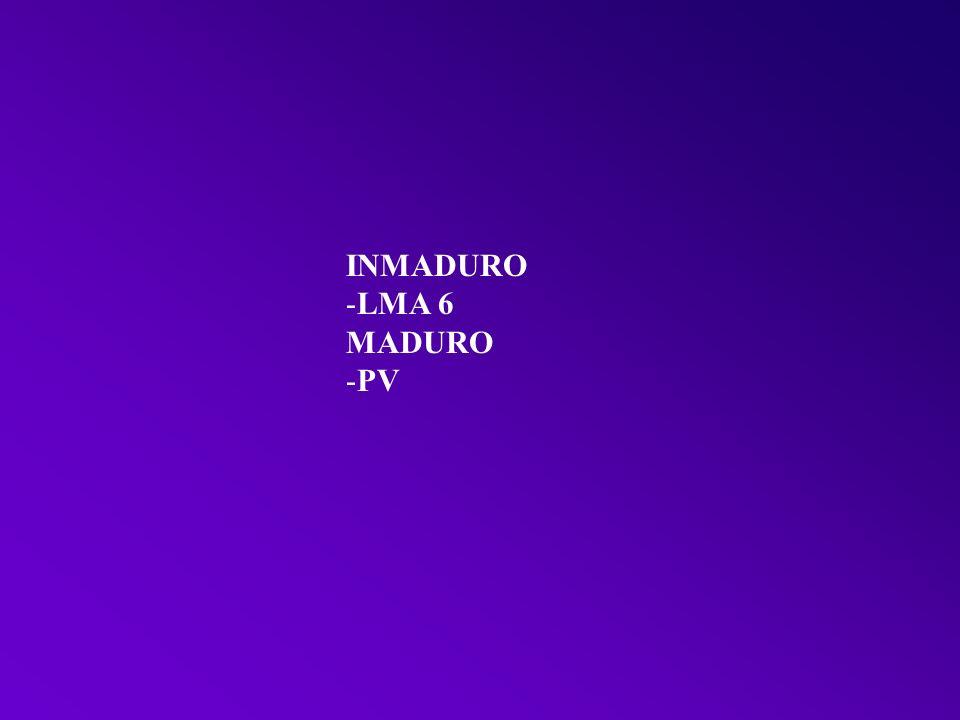 INMADURO LMA 6 MADURO PV
