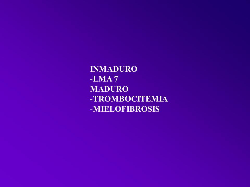 INMADURO LMA 7 MADURO TROMBOCITEMIA MIELOFIBROSIS