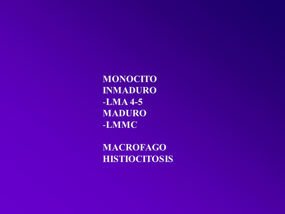 MONOCITO INMADURO LMA 4-5 MADURO LMMC MACROFAGO HISTIOCITOSIS