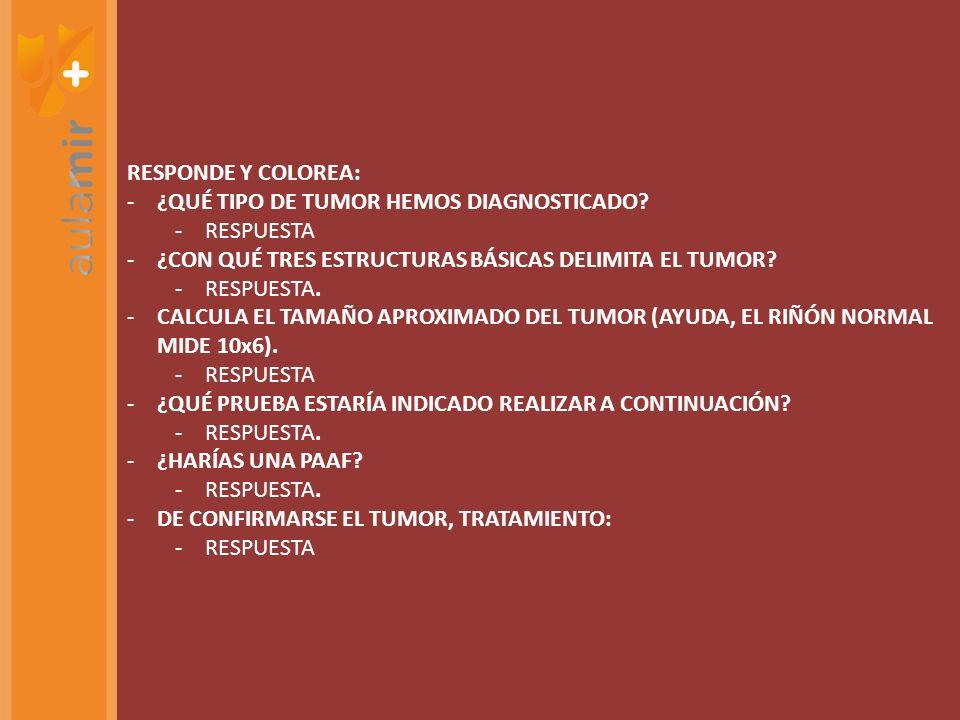 RESPONDE Y COLOREA: ¿QUÉ TIPO DE TUMOR HEMOS DIAGNOSTICADO RESPUESTA. ¿CON QUÉ TRES ESTRUCTURAS BÁSICAS DELIMITA EL TUMOR