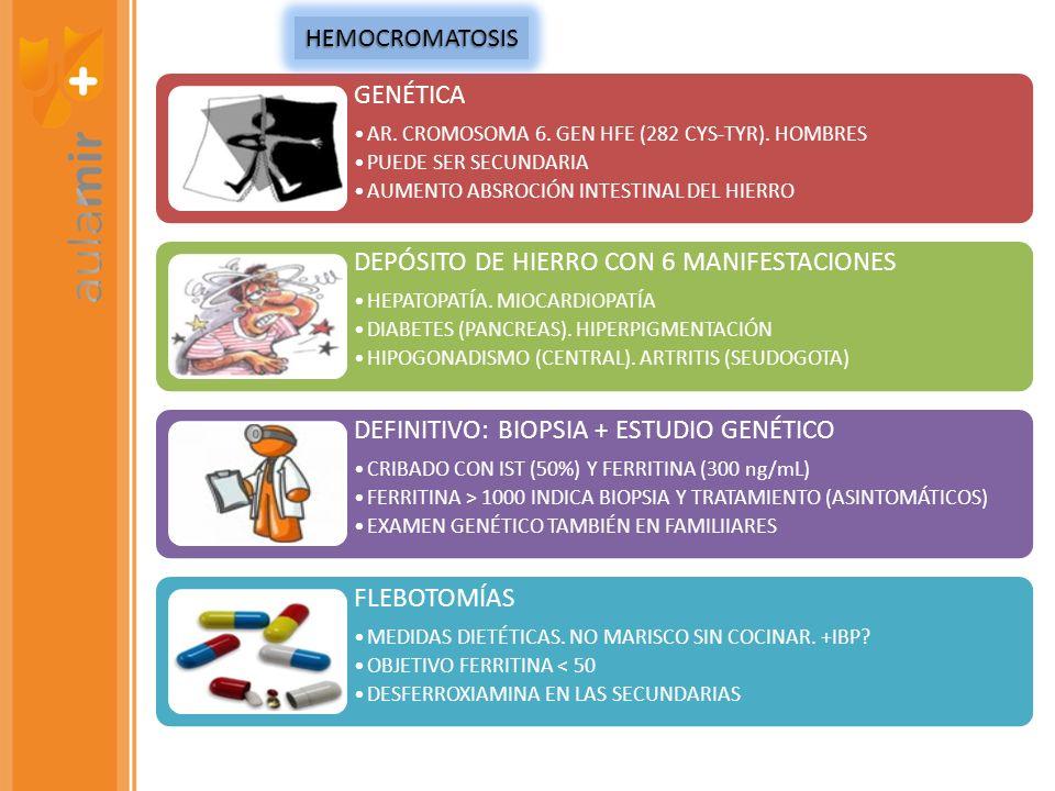 DEPÓSITO DE HIERRO CON 6 MANIFESTACIONES