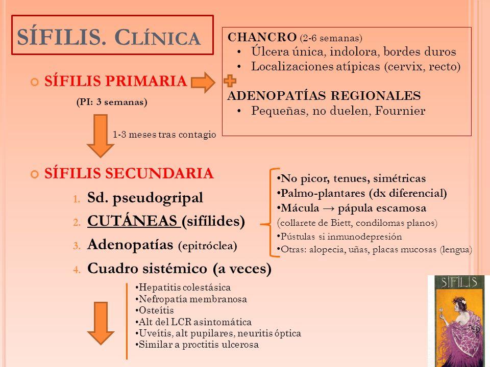SÍFILIS. Clínica SÍFILIS PRIMARIA SÍFILIS SECUNDARIA Sd. pseudogripal
