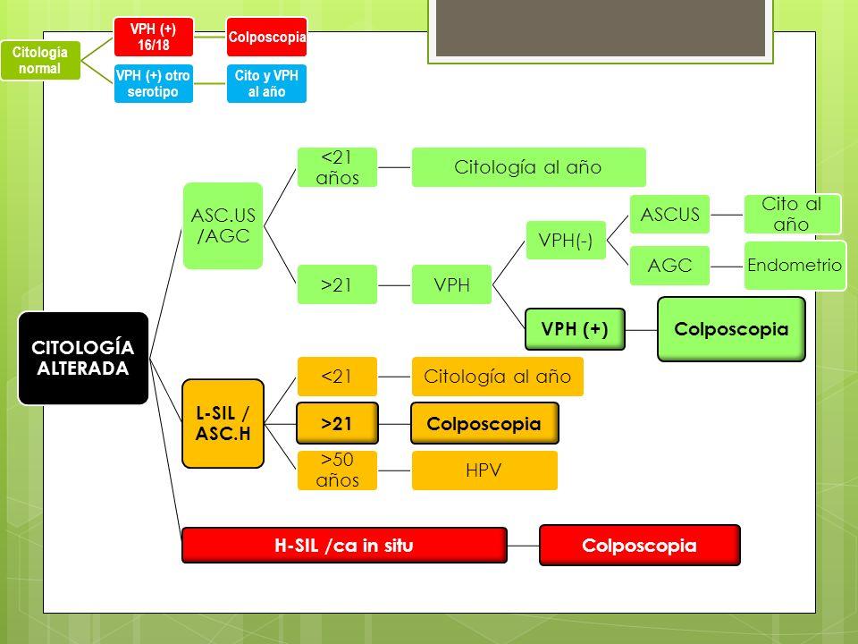 CITOLOGÍA ALTERADA VPH (+) Colposcopia L-SIL / ASC.H H-SIL /ca in situ