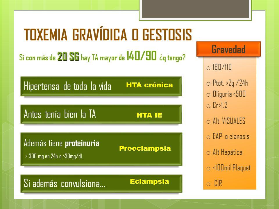TOXEMIA GRAVÍDICA O GESTOSIS
