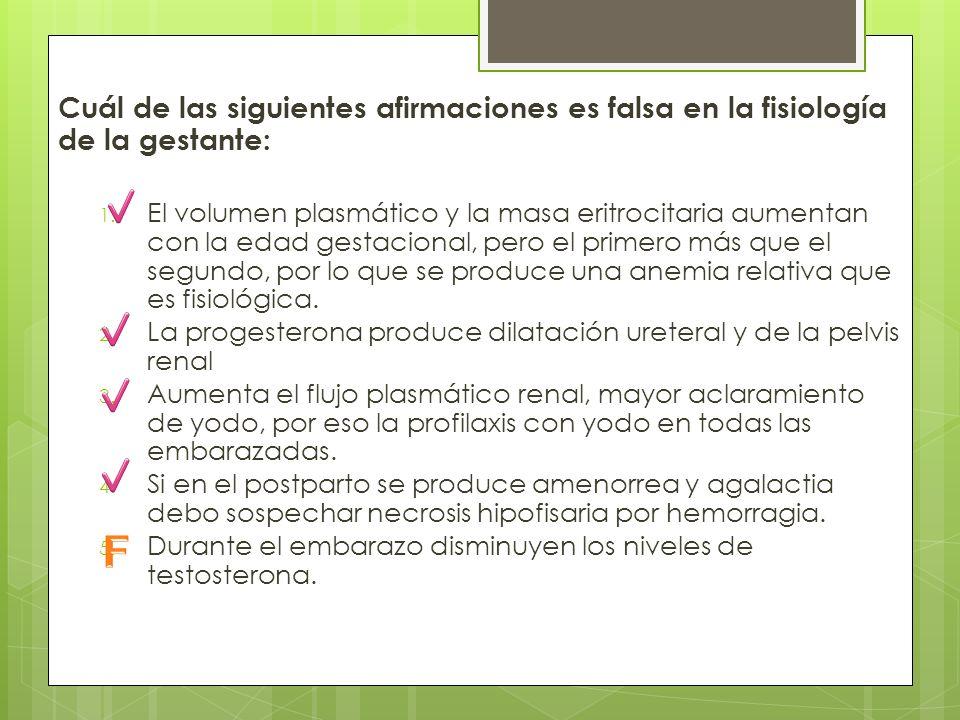 Cuál de las siguientes afirmaciones es falsa en la fisiología de la gestante: