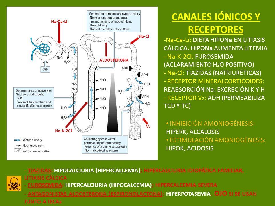 CANALES IÓNICOS Y RECEPTORES