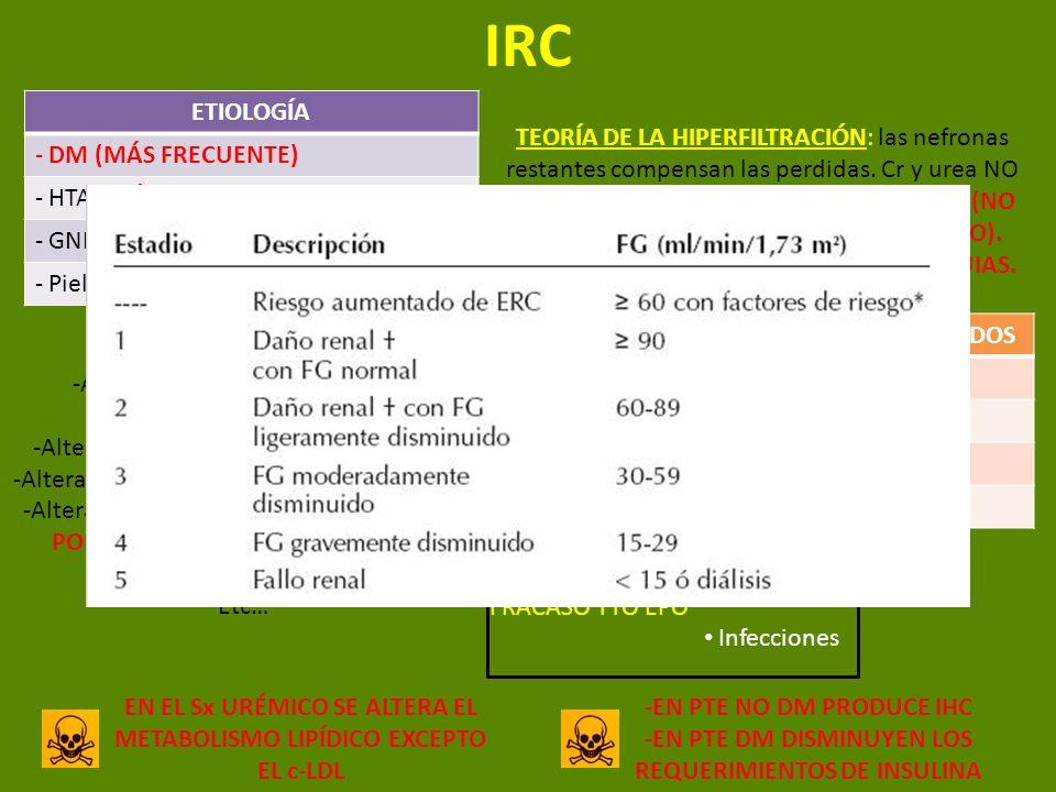 IRC ETIOLOGÍA DM (MÁS FRECUENTE) HTA (MÁS FRECUENTE EN ANCIANOS) GNF
