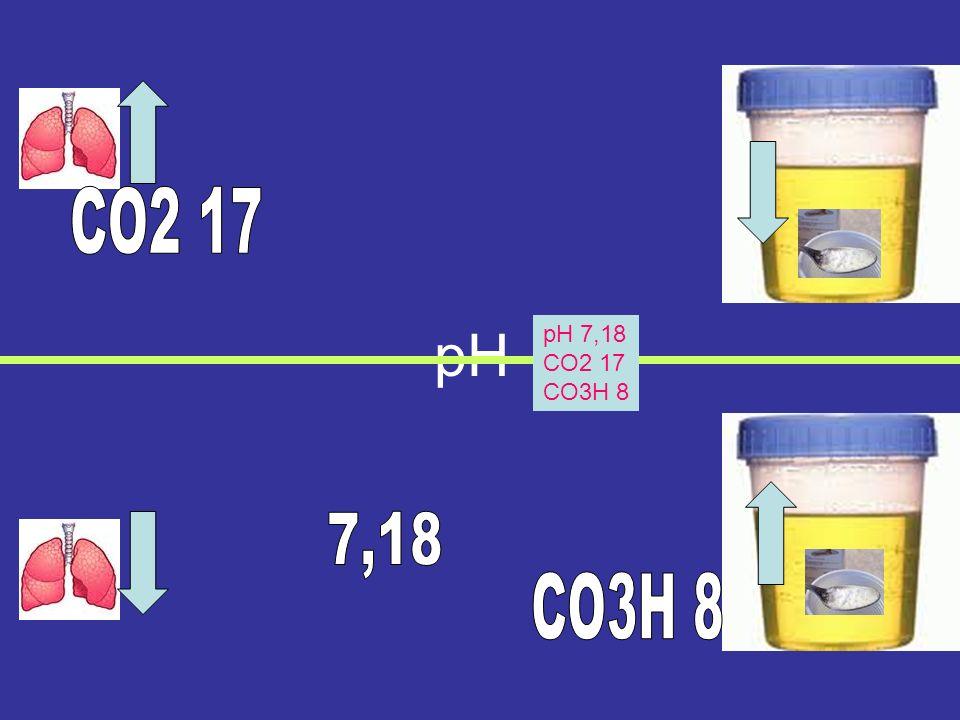 CO2 17 pH pH 7,18 CO2 17 CO3H 8 7,18 CO3H 8