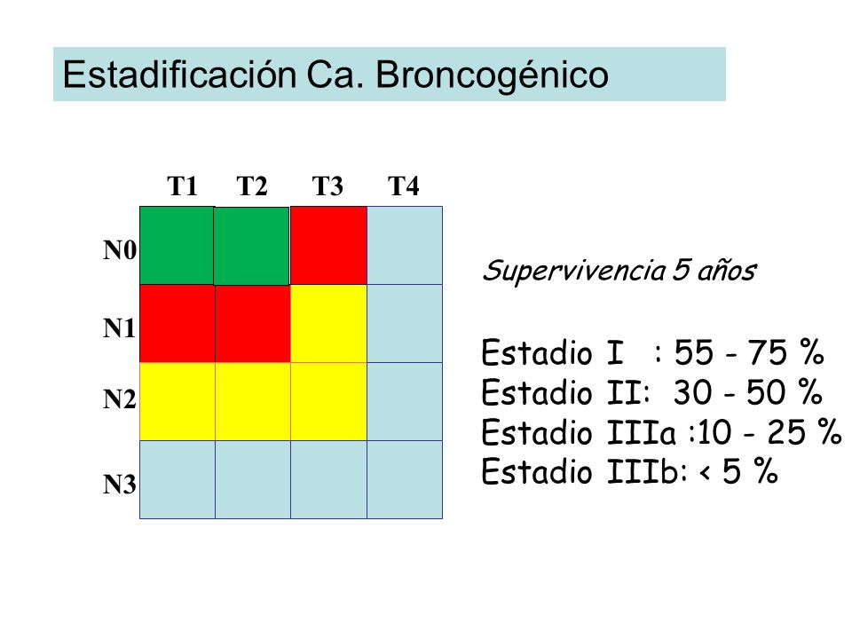 Estadificación Ca. Broncogénico