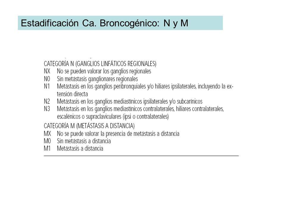 Estadificación Ca. Broncogénico: N y M