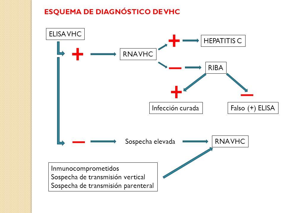 ESQUEMA DE DIAGNÓSTICO DE VHC