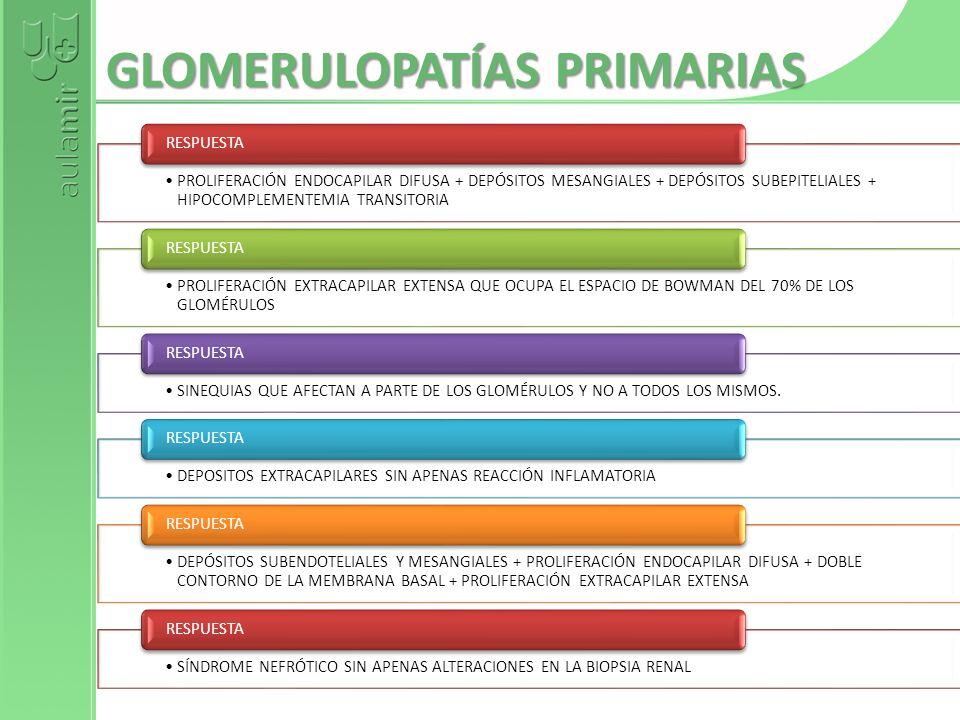 GLOMERULOPATÍAS PRIMARIAS