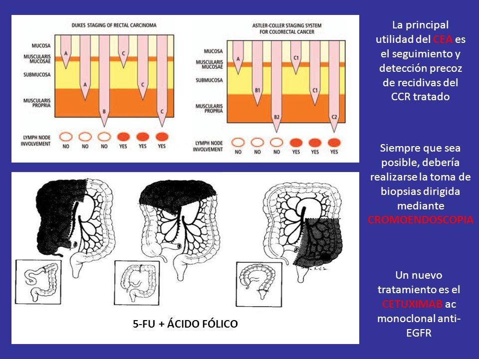 Un nuevo tratamiento es el CETUXIMAB ac monoclonal anti-EGFR