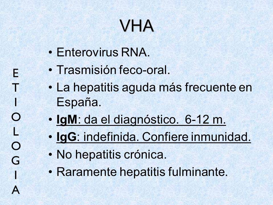 VHA Enterovirus RNA. Trasmisión feco-oral.