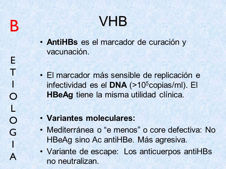 B VHB E T I O L G A AntiHBs es el marcador de curación y vacunación.