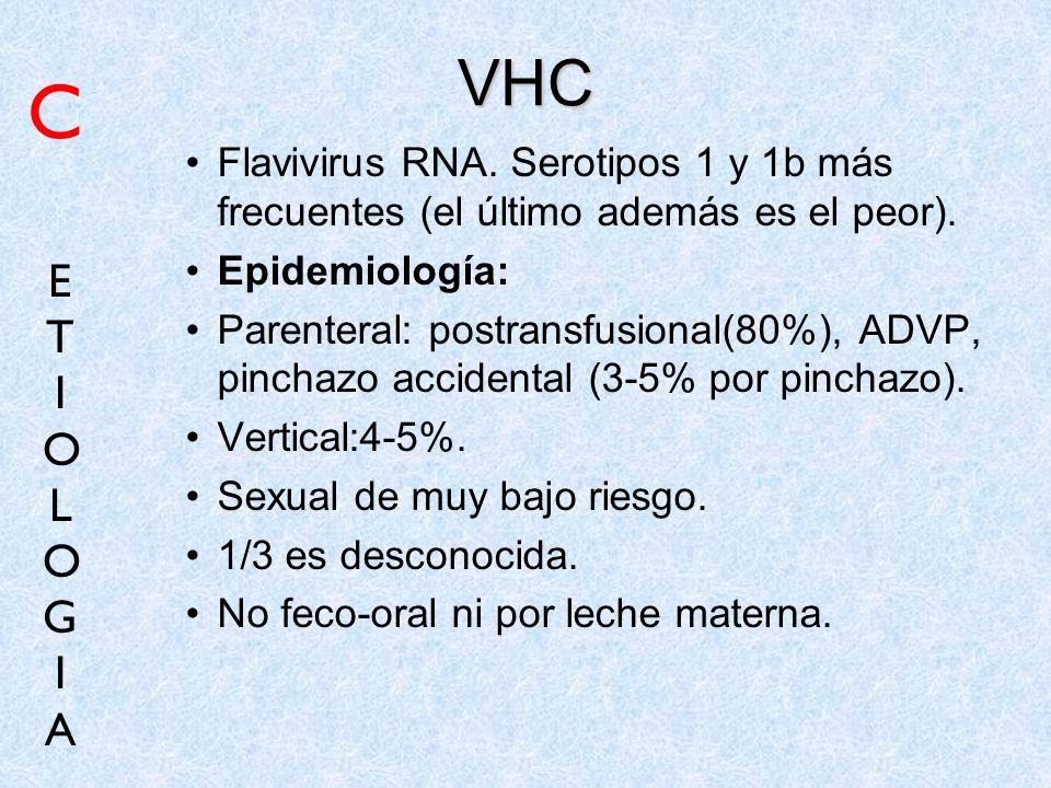 VHCC. Flavivirus RNA. Serotipos 1 y 1b más frecuentes (el último además es el peor). Epidemiología: