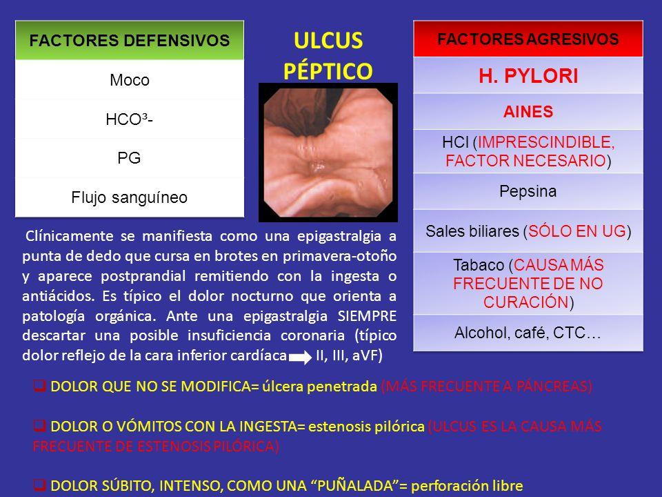 ULCUS PÉPTICO H. PYLORI FACTORES DEFENSIVOS Moco AINES HCO³- PG