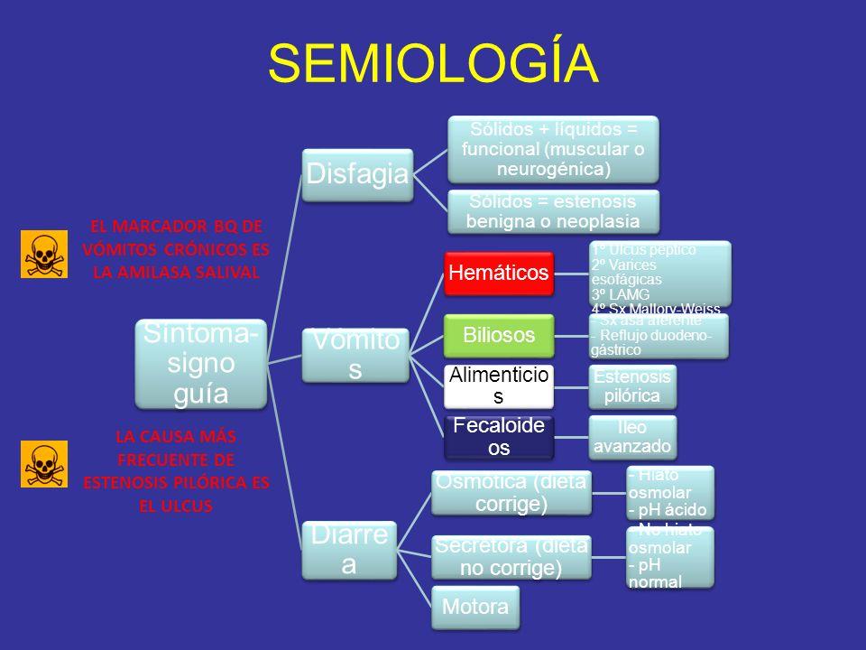 SEMIOLOGÍA Síntoma-signo guía Disfagia Vómitos Diarrea Hemáticos