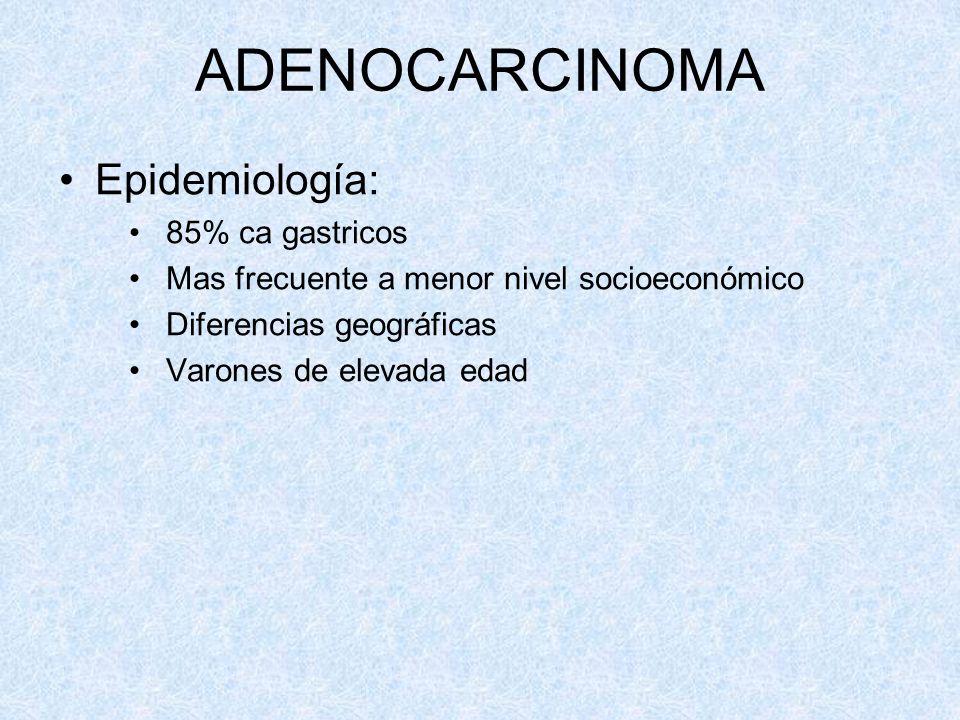 ADENOCARCINOMA Epidemiología: 85% ca gastricos