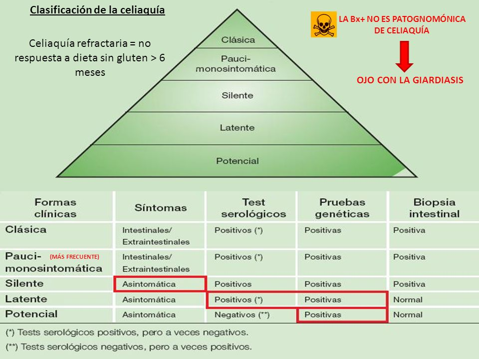 Clasificación de la celiaquía LA Bx+ NO ES PATOGNOMÓNICA DE CELIAQUÍA