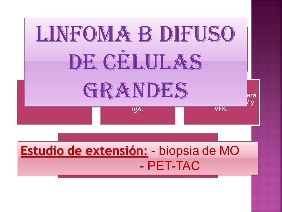 Linfoma B difuso de células grandes