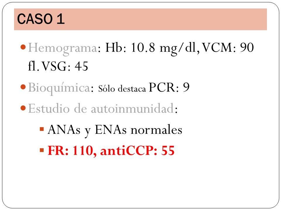 Hemograma: Hb: 10.8 mg/dl, VCM: 90 fl. VSG: 45