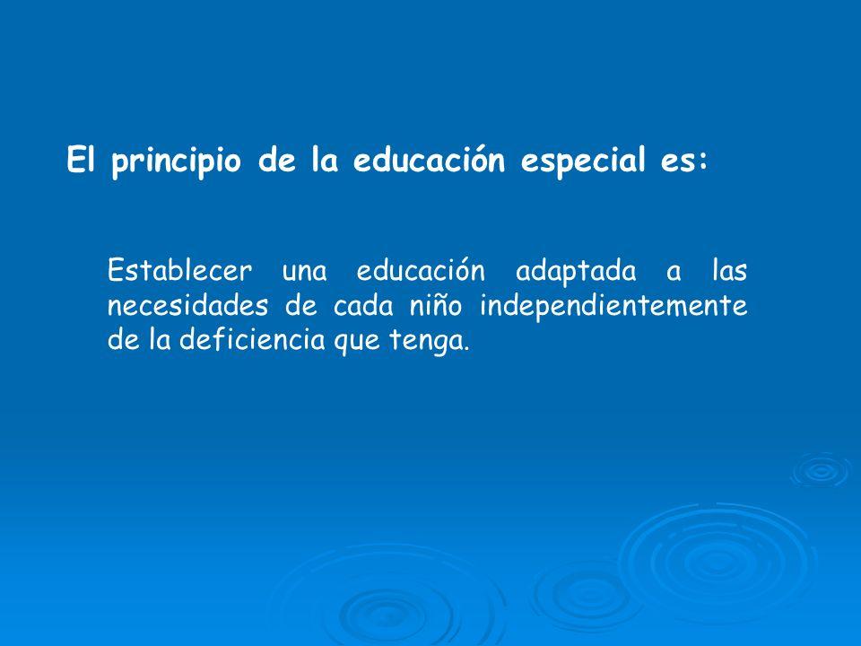 El principio de la educación especial es: