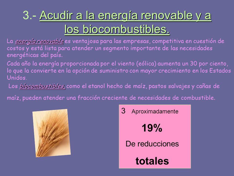 3.- Acudir a la energía renovable y a los biocombustibles.