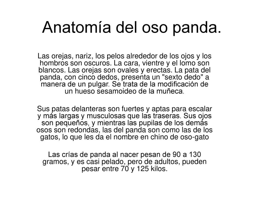 Fantástico Anatomía Osito De Goma Colección de Imágenes - Anatomía ...